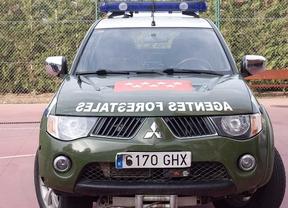 coche patrulla de agentes forestales
