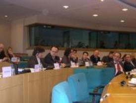 El PE estudiará el urbanismo de Torrelodones por posibles infracciones