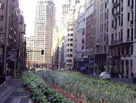 Primavera agroecológica en Madrid