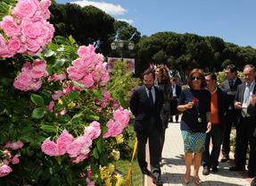 Un rosal francés gana el concurso Villa de Madrid