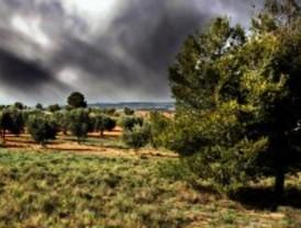 Reconocimientos fotográficos de la biodiversidad en la Semana Félix