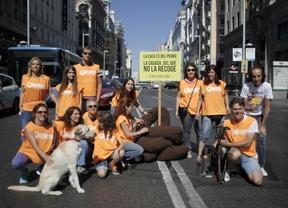 Una gran 'caca' en la Gran Vía para animar a los dueños de los perros a recogerlas
