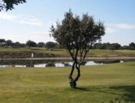 Boadilla niega la destrucción de árboles con la ampliación del campo de golf