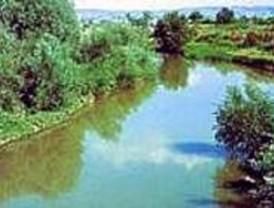 Ruta por el río Guadalix