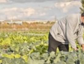 El primer polígono agroecológico de Madrid, en Rivas