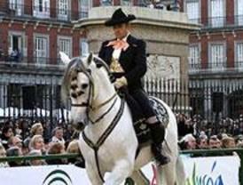 Los caballos andaluces bailan en la Plaza Mayor