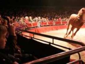 El circo, lugar de integración