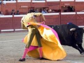 Los toros protagonizan las fiestas de Pozuelo