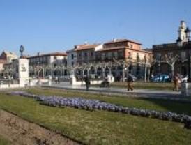 Concurso de árboles anticontaminación en Alcalá