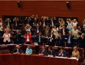 Los socialistas quieren una reforma del Estatuto de Autonomía para incluir derechos sociales