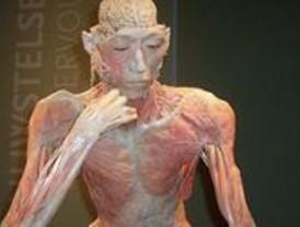 LLega a Madrid la exposición 'Bodies...the exhibition'