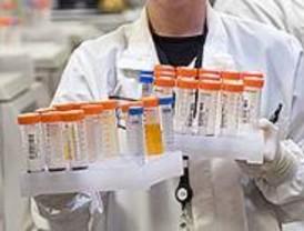 Las unidades de sangre de cordón umbilical deberán duplicarse en ocho años