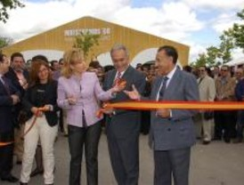 Empresas y Casas Regionales en la IV Feria de Muestras de Móstoles