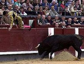 Controles antidoping para los Toros