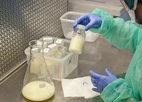 La Paz y el Puerta de Hierro recibirán leche materna donada para los bebés prematuros