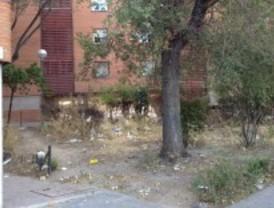 El Ayuntamiento no recepciona las zonas verdes de Colonia Fontarrón