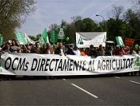 Miles de agricultores se manifiestan en Madrid por la crisis de los precios