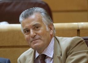 Luis Bárcenas en el Senado