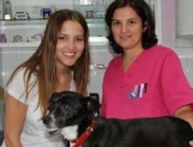 La actriz Ana Fernández visita El Refugio para promover la adopción de animales