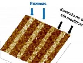 Litografía con enzimas
