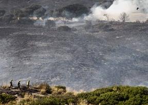 La región ha sufrido 37 incendios forestales este verano