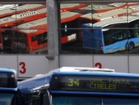 Sacar fotos desde el bus no está prohibido y tiene premio