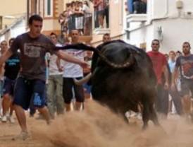 La Comunidad autoriza en la primera mitad de año 272 espectáculos taurinos