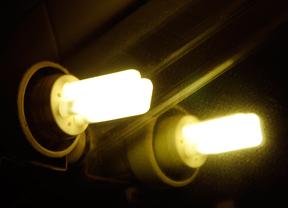 Dos bombillas eléctricas
