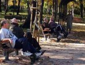 El PSOE alerta de que 60.000 mayores pueden sufrir malos tratos