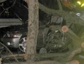 Cinco jóvenes heridos al colisionar con con un coche de gama alta contra un taxi