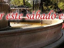 ¿Qué hacer este sábado en Madrid?