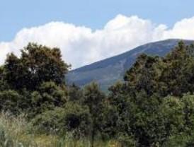 Más de 3.000 madrileños participan en las rutas por la Sierra Norte