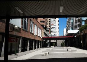 Avenida de Brasil y Azca serán declaradas zonas de protección acústica especial