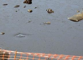 Los ecologistas temen que la restauración de la Laguna del Aceite sea un