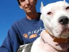 Rescatan a una perra a la que estrangularon con un cordón de zapato