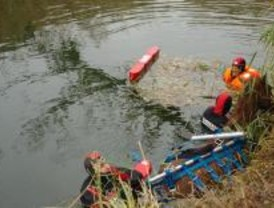 Los Bomberos rescata un caballo que cayó al río Henares en una finca de Alcalá
