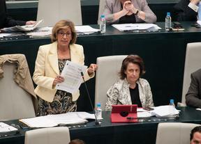 UPyD denuncia la adjudicación de contratos menores por 'amiguismo' en Madrid