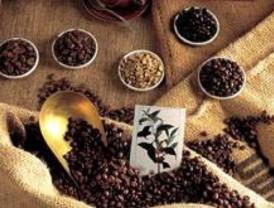 El 'Bus del café' llega a Madrid para dar a conocer la calidad de ese producto