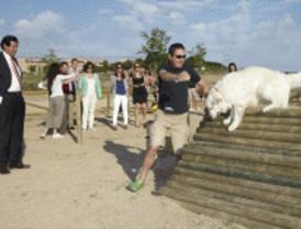 Nuevo parque canino en Las Rozas