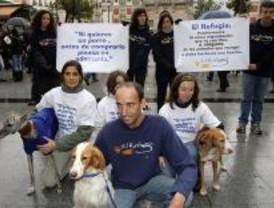 Campaña para promover la adopción de animales