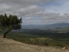 Alerta por fuertes vientos en la Sierra