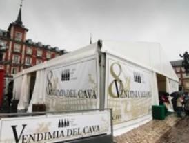 La Vendimia del Cava reúne a 3.000 madrileños en la plaza Mayor
