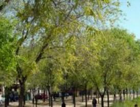 El Ayuntamiento acondiciona la cascada y zona forestal del Parque del Manzanares