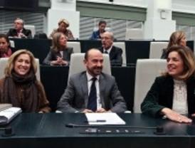 El Pleno despide a Cobo, Bravo y Martínez