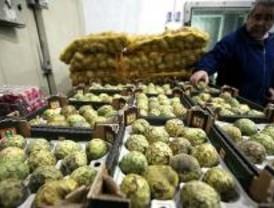 Ifema celebra la primera feria sobre frutas y hortalizas