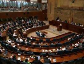 La Asamblea retoma sus plenos con Posada como nueva vicepresidenta