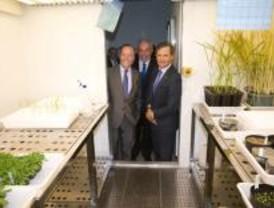 El Centro de Biotecnología y Genómica de Plantas de Pozuelo ya está inaugurado