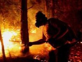 El PSOE denucia el peligro de incendio en los 'Los Robles' por no recoger la basura