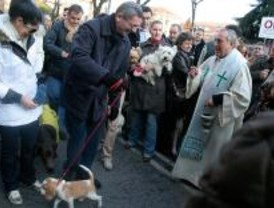 Los dueños de mascotas cumplen con la tradición del Día de San Antón