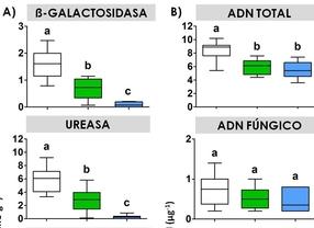 Acciones enzimáticas y contenidos en ADN